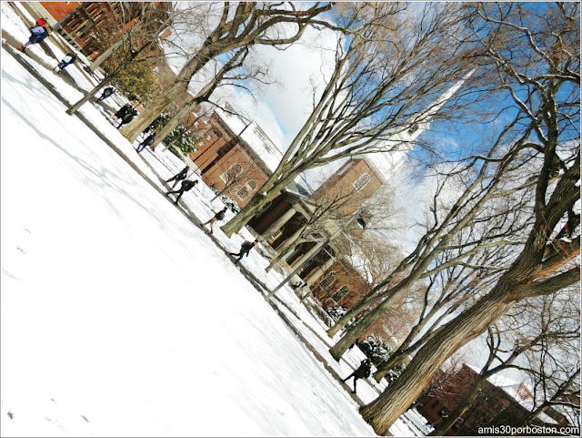 Primavera Nieve 2016 Universidad Harvard
