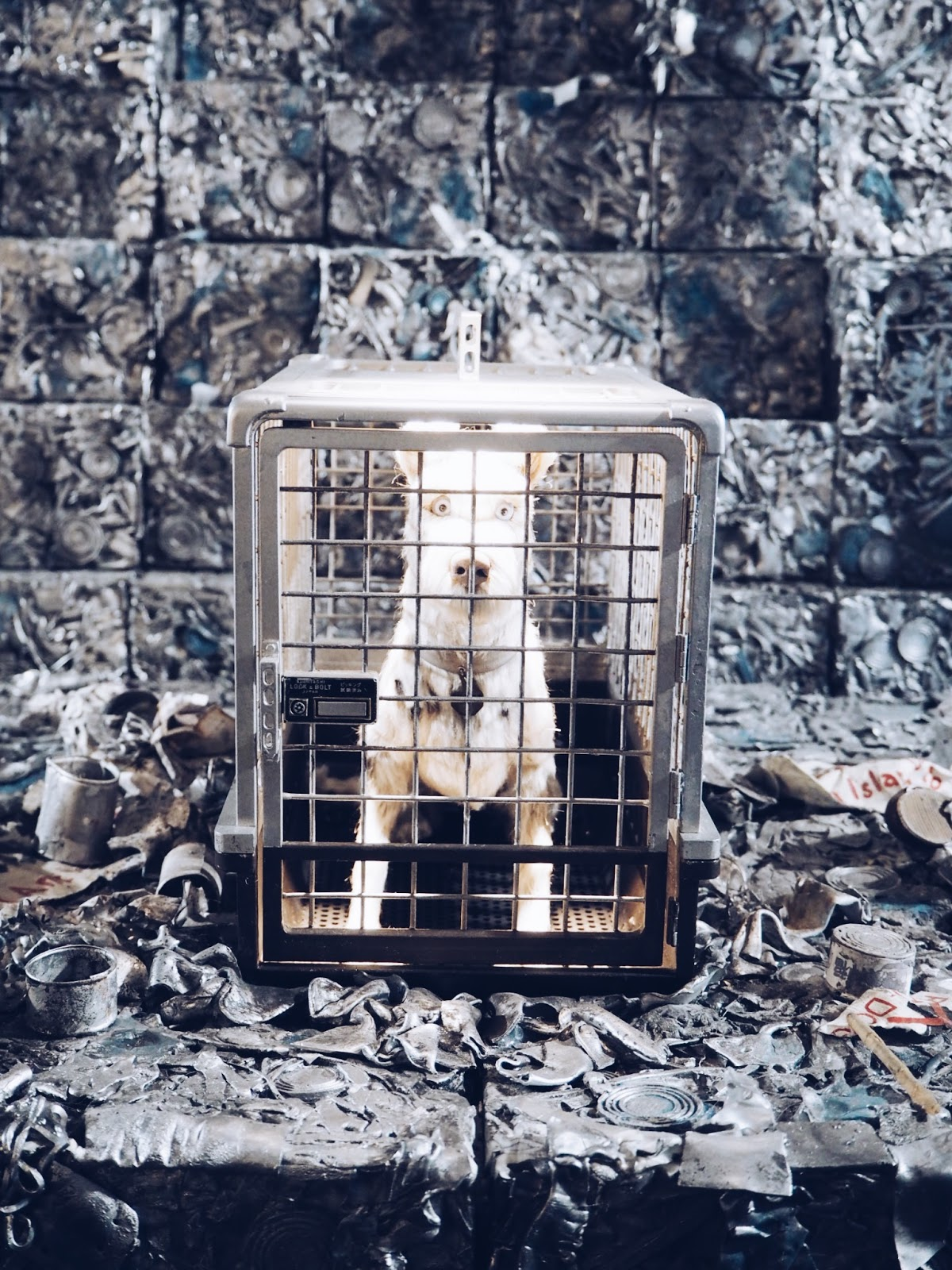 dog puppet in cage on trash island