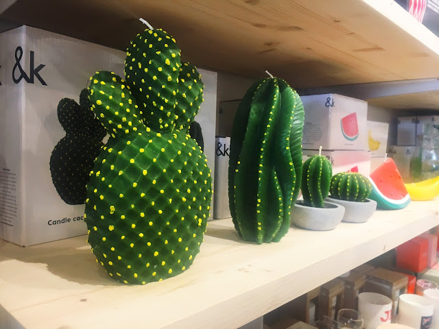 cactus candles on shelf