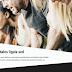Μήπως ήρθε η ώρα να αποκτήσετε ιστοσελίδα για την επιχείρηση σας;