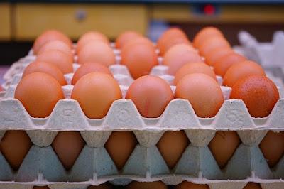 Eggetarian - Vegeterian who eats eggs only