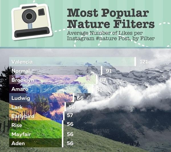 Tempat Membuat Desain Infografis Online