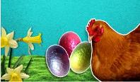 Πως η ΕΕ κρατά τα Αυγά υγιή και ασφαλή