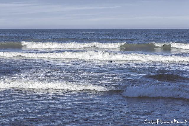 Las olas del mar llegando a la costa.