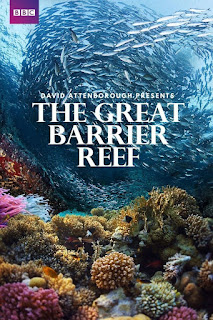 Great Barrier Reef Documentar Online Subtitrat Romana