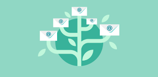 How to Grow an Email List from Scratch