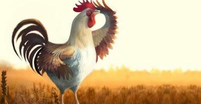 6 шагов становления ранней пташки