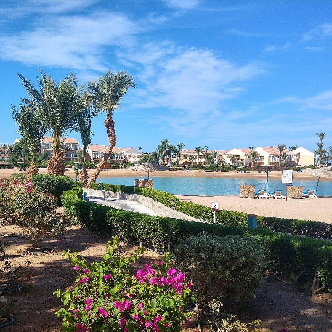 2017, ägypten, blogger, delphine, el gouna, hurghada, kitesurfen, korallenriff, lagunenstadt, mövenpick resort & spa, oase in der wüste, reisebericht, reiseblogger, rotes meer, schnorcheln, tauchen, travel, urlaub,