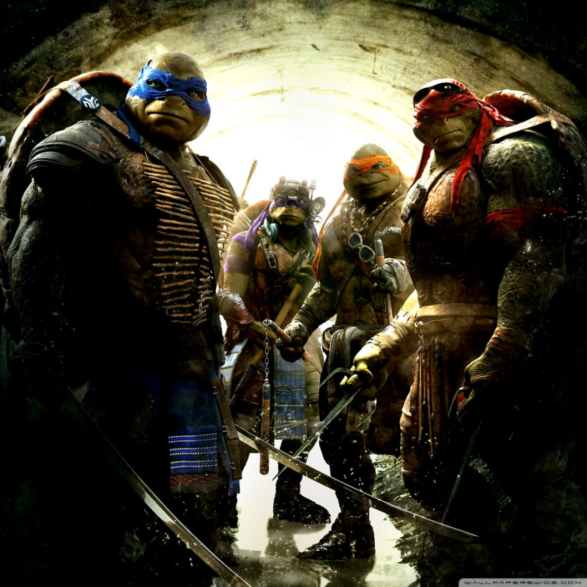 Teenage Mutant Ninja Turtles 2014 Wallpapers All In One