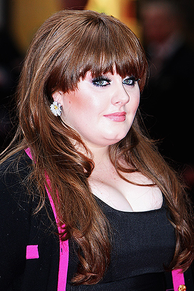 Evolution Adele 2008