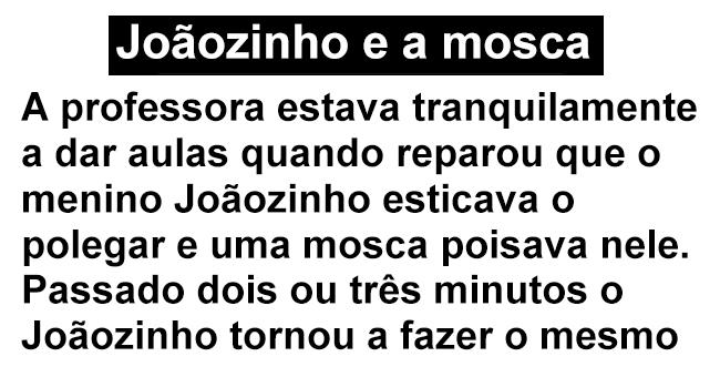 O Joãozinho e a mosca