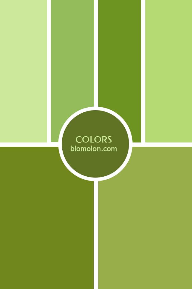 inspiracion_color_17
