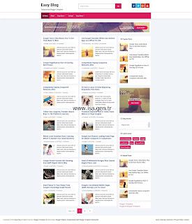 Easy Blog Ana Sayfa