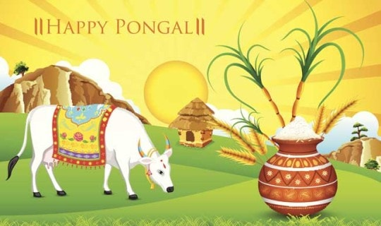 Happy Pongal wishes 2017 Quotes and Greetings