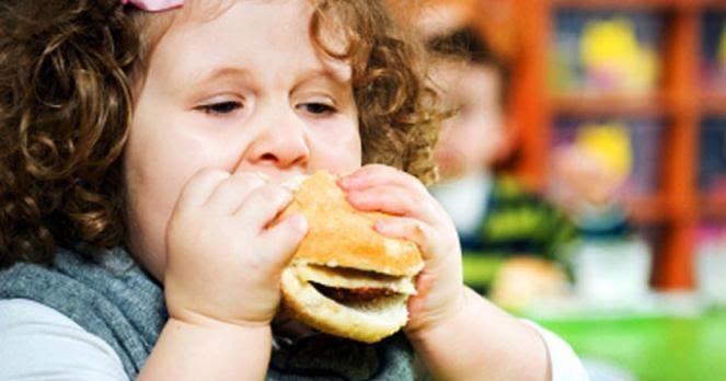 Cara Menanggulangi Obesitas Pada Lovebird