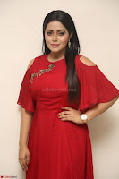 Poorna in Maroon Dress at Rakshasi movie Press meet Cute Pics ~  Exclusive 184.JPG