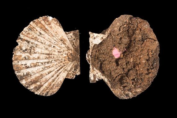 Estuche de maquillaje de época romana localizado en una tumba en la ciudad de Mérida. Foto: Consorcio de Mérida.