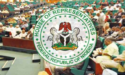 LICENCE TO KILL!!! House Of Reps Has Introduced Bill To Allow All Nigerians From The Age Of Eighteen To Carry Gun.