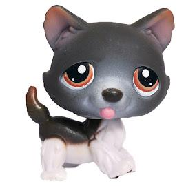 Littlest Pet Shop Tubes Husky (#174) Pet