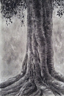 Charcoal drawing of tree as seen on the banks of Kaveri river at Dubare forest