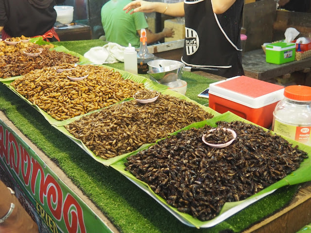 Insects stall at Naka Weekend Market, Phuket, Thailand