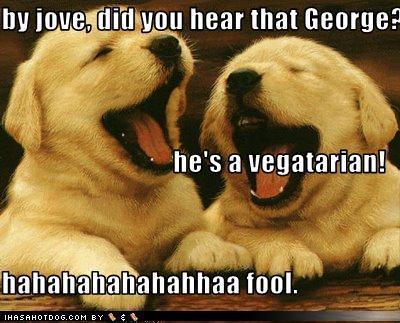 Animal jokes - photo#48