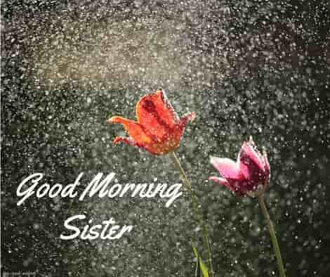 good morning sister rain