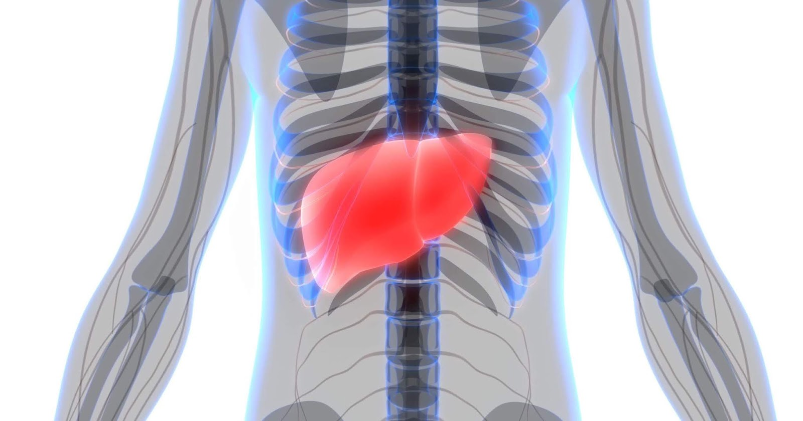 Liver Cancer Deaths Soar In South Carolina, Across The US