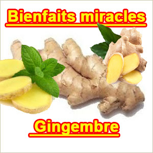 bienfaits-miracle-gingembre