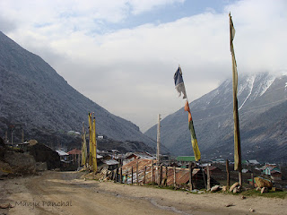 Photograph taken at Thangu, North Sikkim