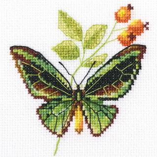RTO, Веточка шиповника и бабочка