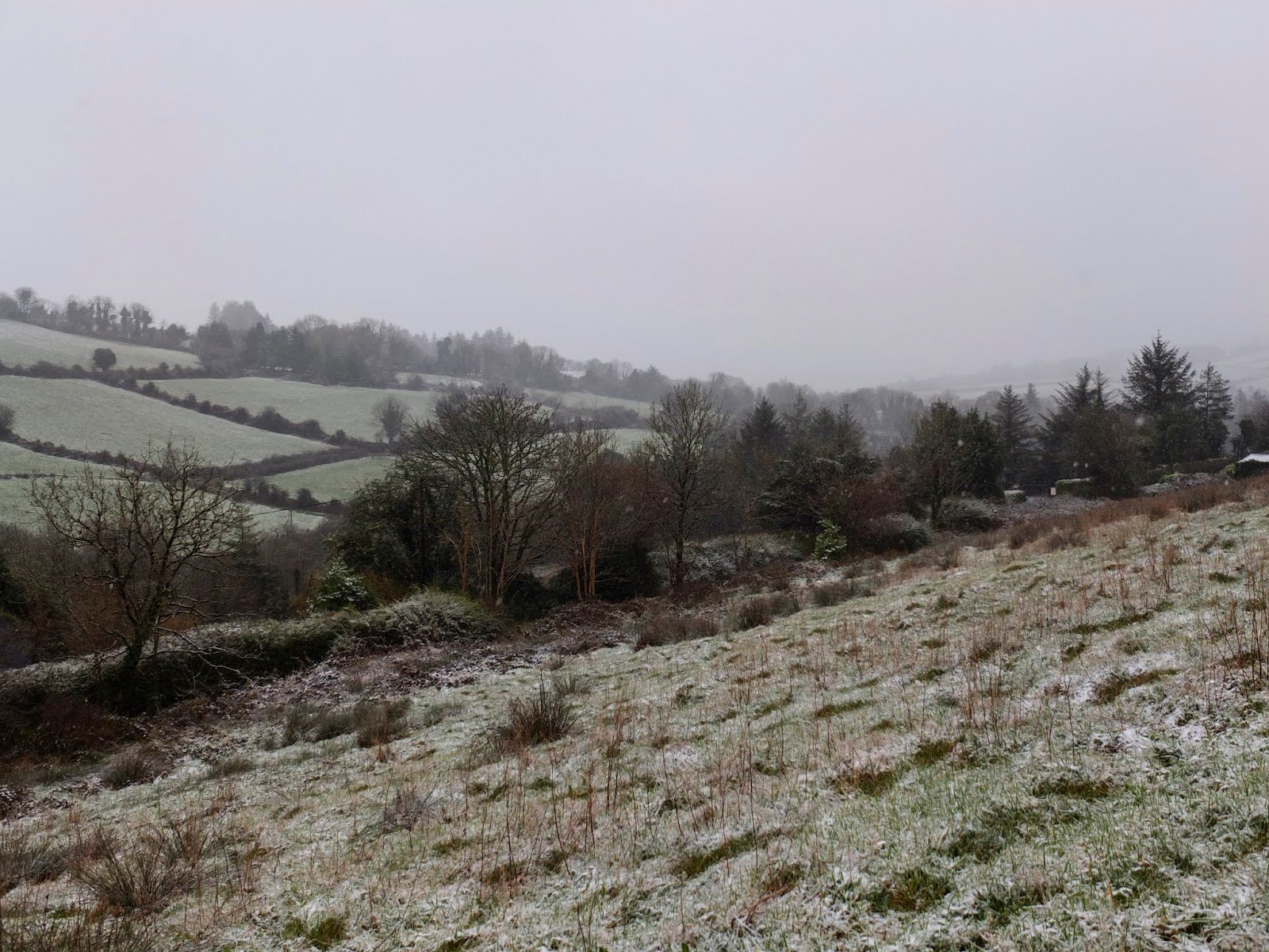 Snow beginning to cover the Boggeragh Mountains in County Cork.