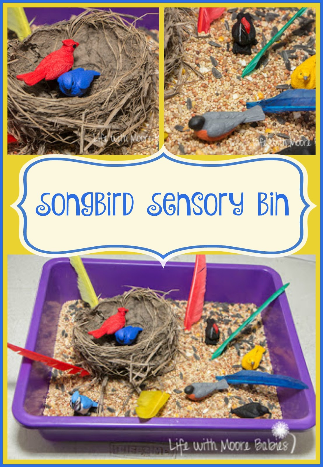 Songbird Sensory Bin For Your Little Birder