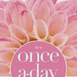 Review: Once a Day Bible for Women