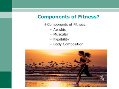 The 4 elements of fitness : Most people want to be fit, but this raises a question. What does it mean to be fit? The answer is quite simple. To be fit, you must have a physical ability in four areas: aerobic fitness, muscle strength and endurance, flexibility and body composition , The 4 elements of fitness.