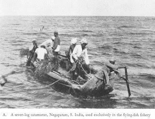 Seven-log flying fish catamaran of the Coromandel Coast