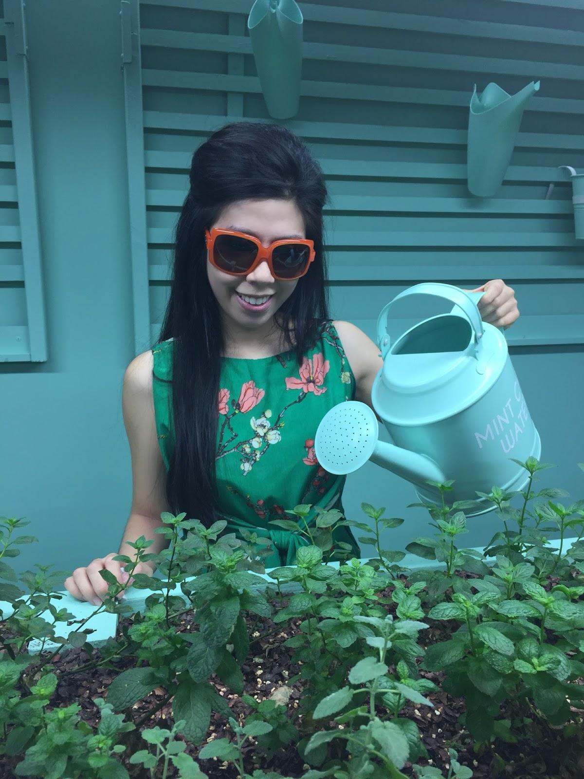 Adrienne Nguyen_Invictus_Mint Plants_Gardening_Lifestyle Blogger