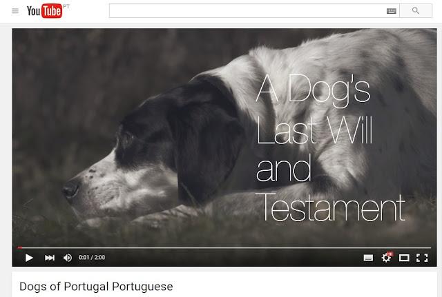 a dog's last will + testament+ testamento de um cão + testemunho canino + blogue de animais de estimação + vida de pet + pedro e telma
