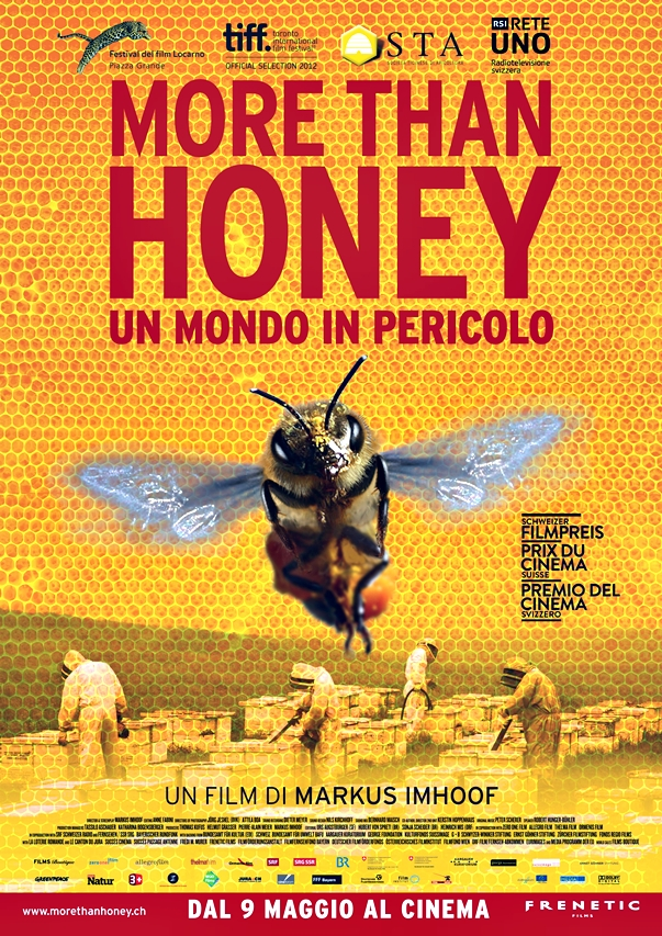 More Than Honey póster