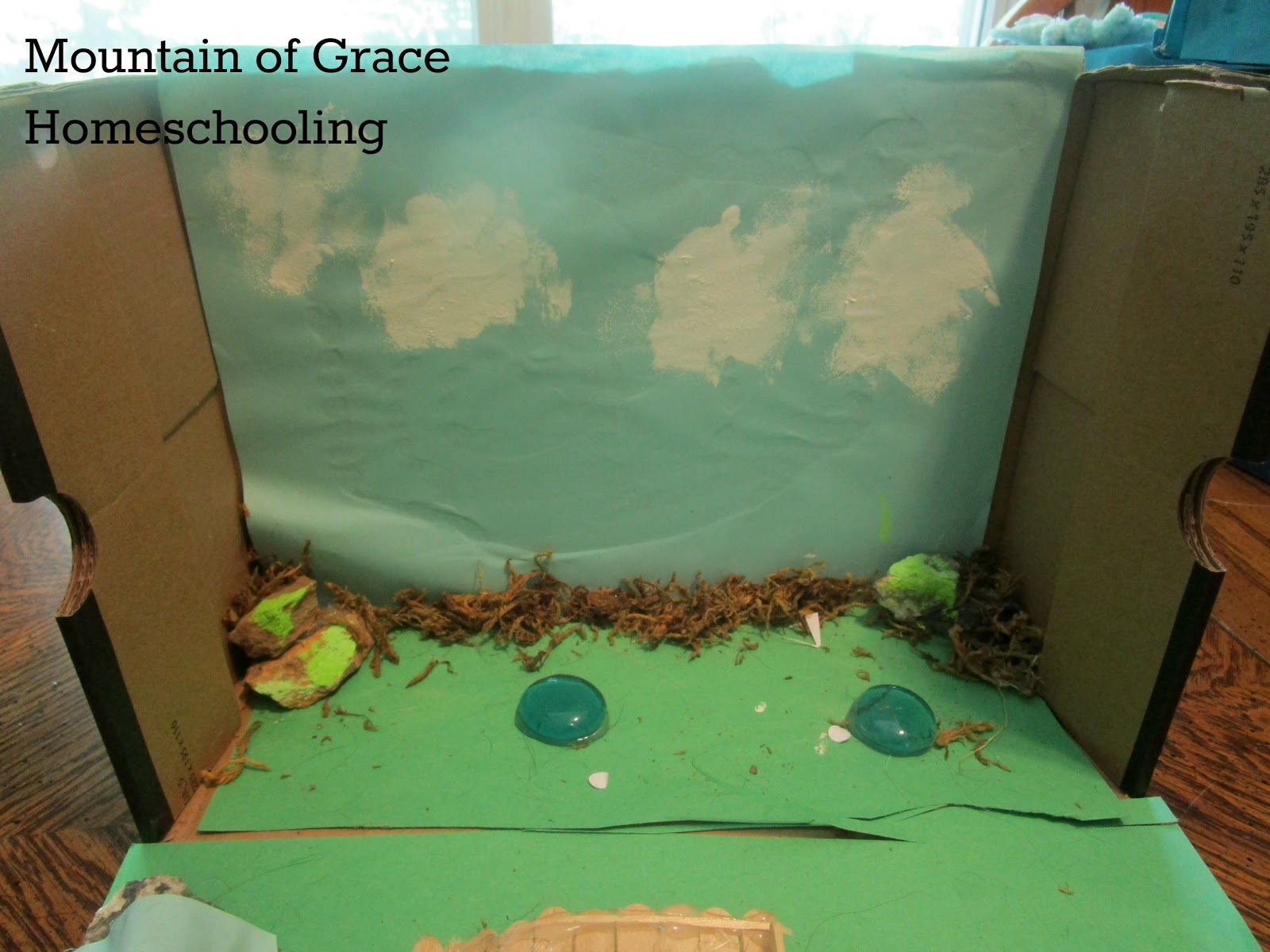 Mountain Of Grace Homeschooling Learning About The