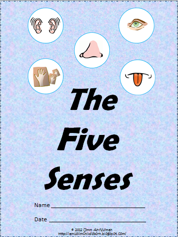 A Muslim Child Is Born The 5 Senses Theme Pack Pre School