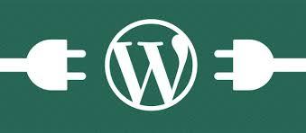 Plugin wordpress yang sangat berguna untuk anda