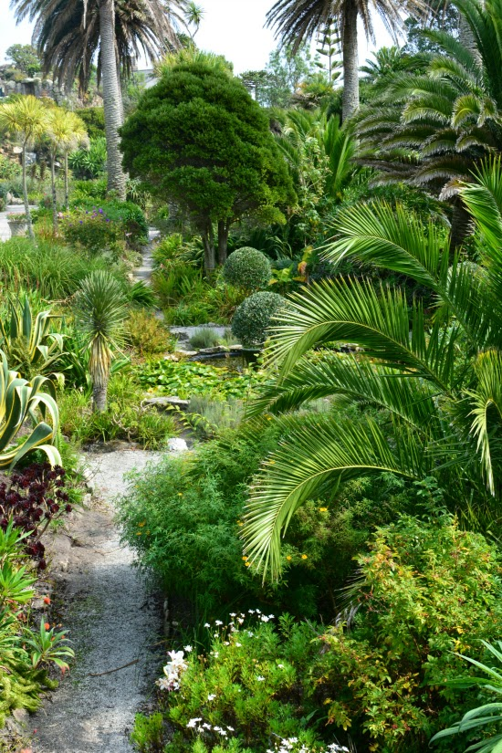Tresco Abbey Gardens Scilly