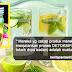 Air Detoks Yang Campur Buah-buahan Tu boleh Kuruskan Badan? Baca sini Hadam Baik2