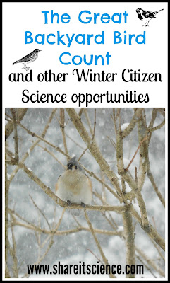 Great Backyard Bird Count Winter Citizen Science