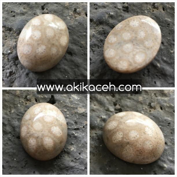 Batu Akik Teratai Putih