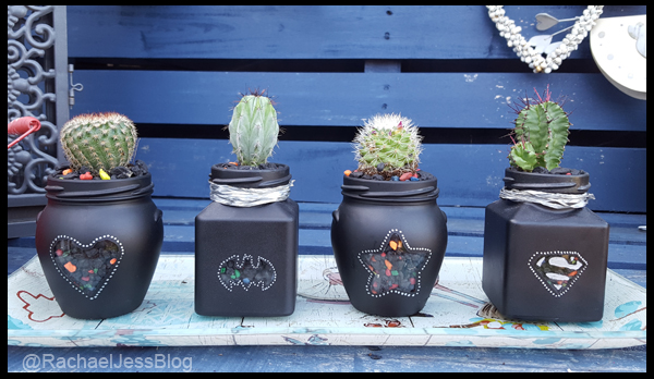 Finding little pots to plant Cactus in
