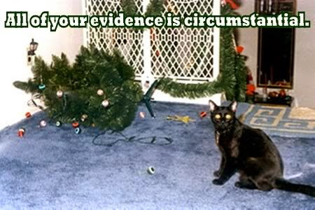 Reaganite Independent Cats Vs Christmas Trees