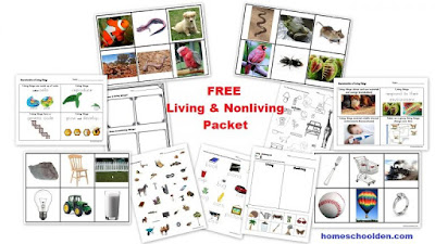 http://homeschoolden.com/free-living-and-nonliving-cards-and-worksheets/