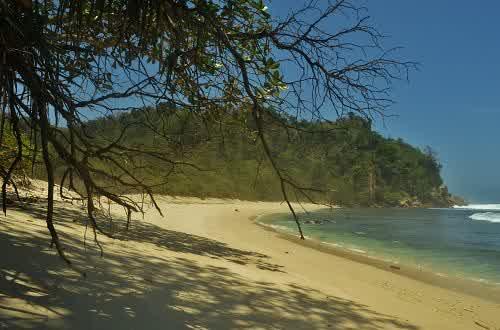Berwisata Di Pantai Ngalur di Tulungagung
